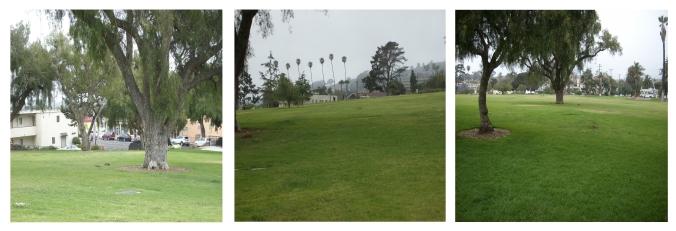Cemetary park veiws